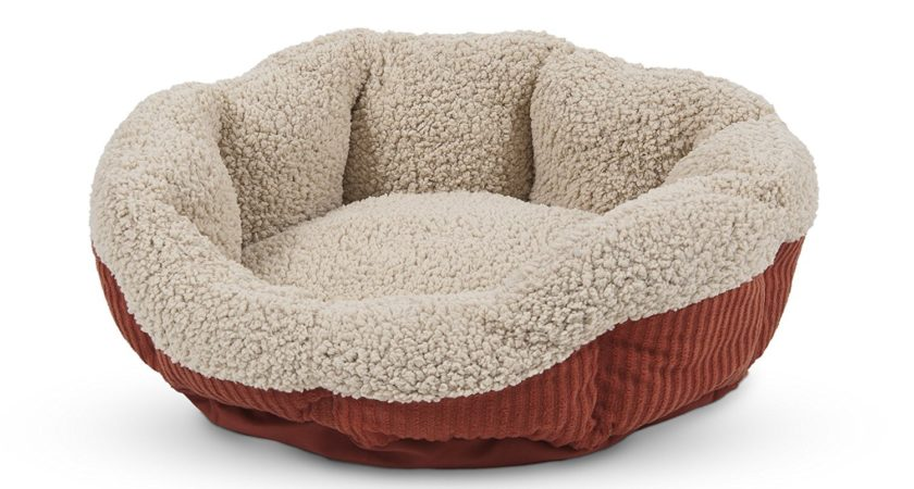 Aspen Pet Self-Warming Cat Bed Review